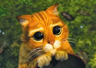 oczy+kota+ze+shreka.jpeg
