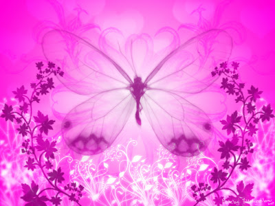 pink butterfly wallpaper,
