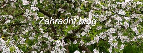 Zahradní blog