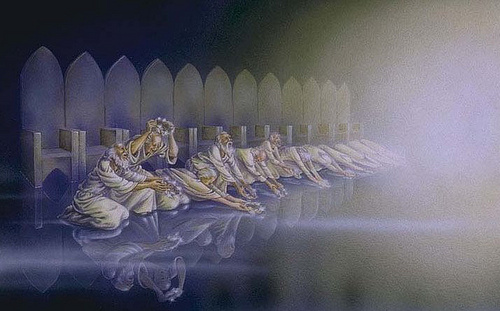 There S Room For All Of God S Creatures