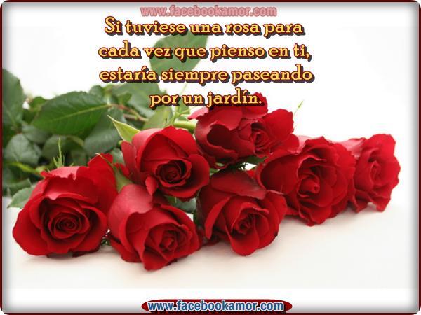 Imagenes De Flores Para El Amor