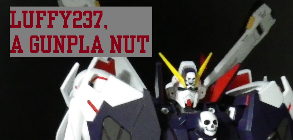 Luffy237, A Gunpla NuT