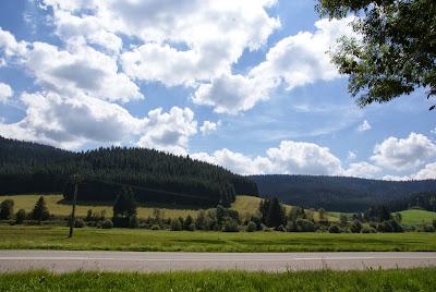 Tour della Foresta Nera in macchina: come muoversi e quali sono le tappe imperdibili