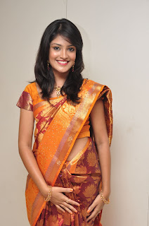 Model krupali in silk saree at cmr ashadam event 004.jpg
