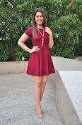 Rashi Khanna latest sizzling pics-thumbnail-14