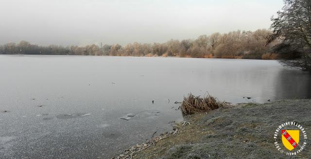 MESSEIN (54) - Les étangs saisis par le gel : l'étang Landru