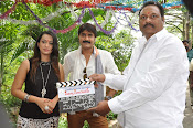Jalsarayudu movie opening photos-thumbnail-16