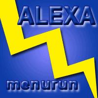 Hal Yang Harus Dilakukan Ketika Alexa Rank Menurun