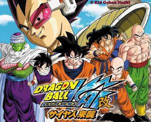 Dragon Ball Z Kai Complete 720p Dual Audio Eng-Jap MKV