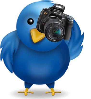 Twitter Annunci Personalizzati