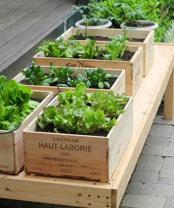 http://1.bp.blogspot.com/-Nn2ijb7-SM0/VR0q9VYQF_I/AAAAAAAAVcs/FYdedzHZMbs/s1600/container-garden-wine-box-5701.jpg