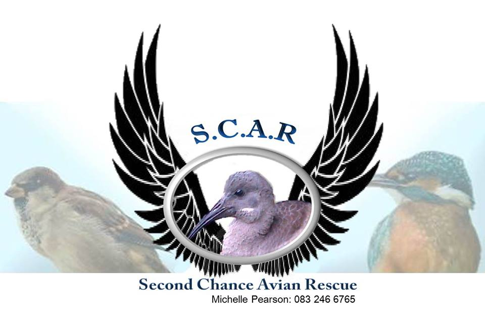 Second Chance Avian Rescue