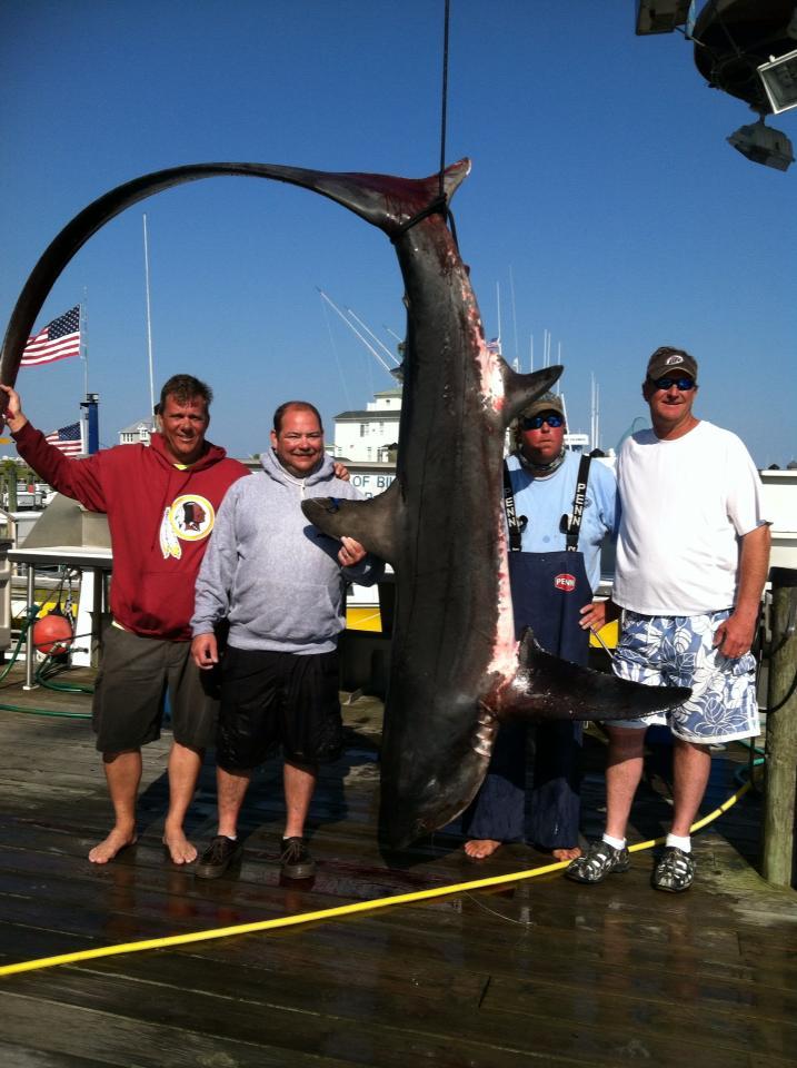 May 30 2013 daily reports news ocean city fishing center for Ocean city fishing center