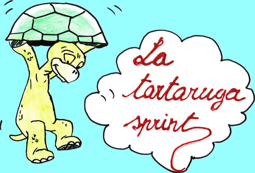 la tartaruga sprint