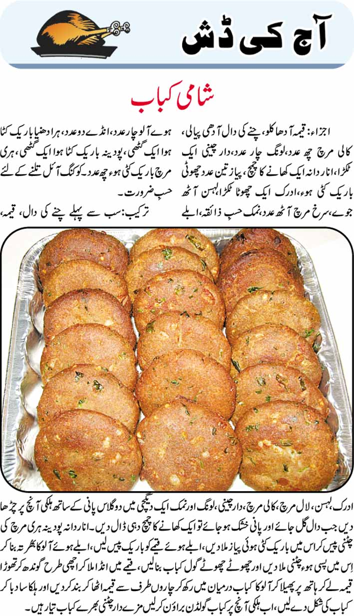 Daily Cooking Recipes In Urdu Shami Kabab Recipe