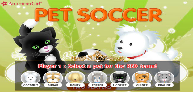 pet soccer .swf flash game, funny flash game