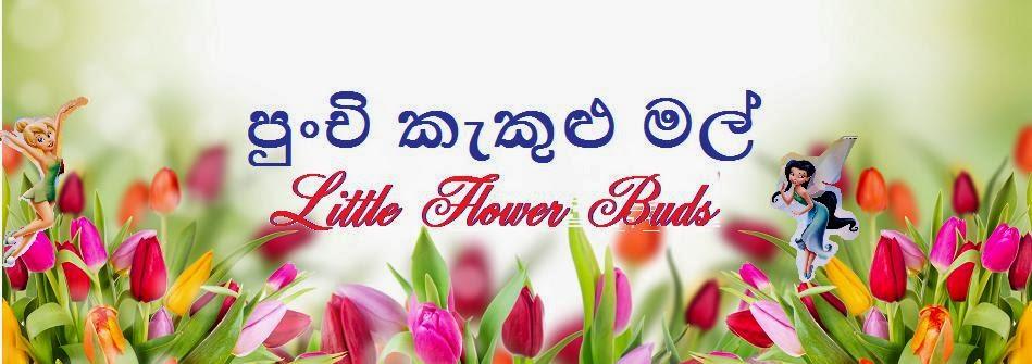 පුංචි කැකුළු මල්~Little Flower Buds