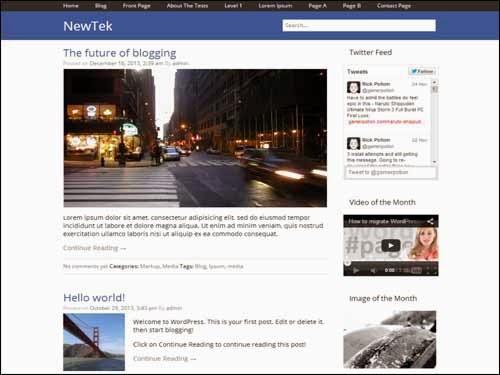 NewTek Free WordPress Theme
