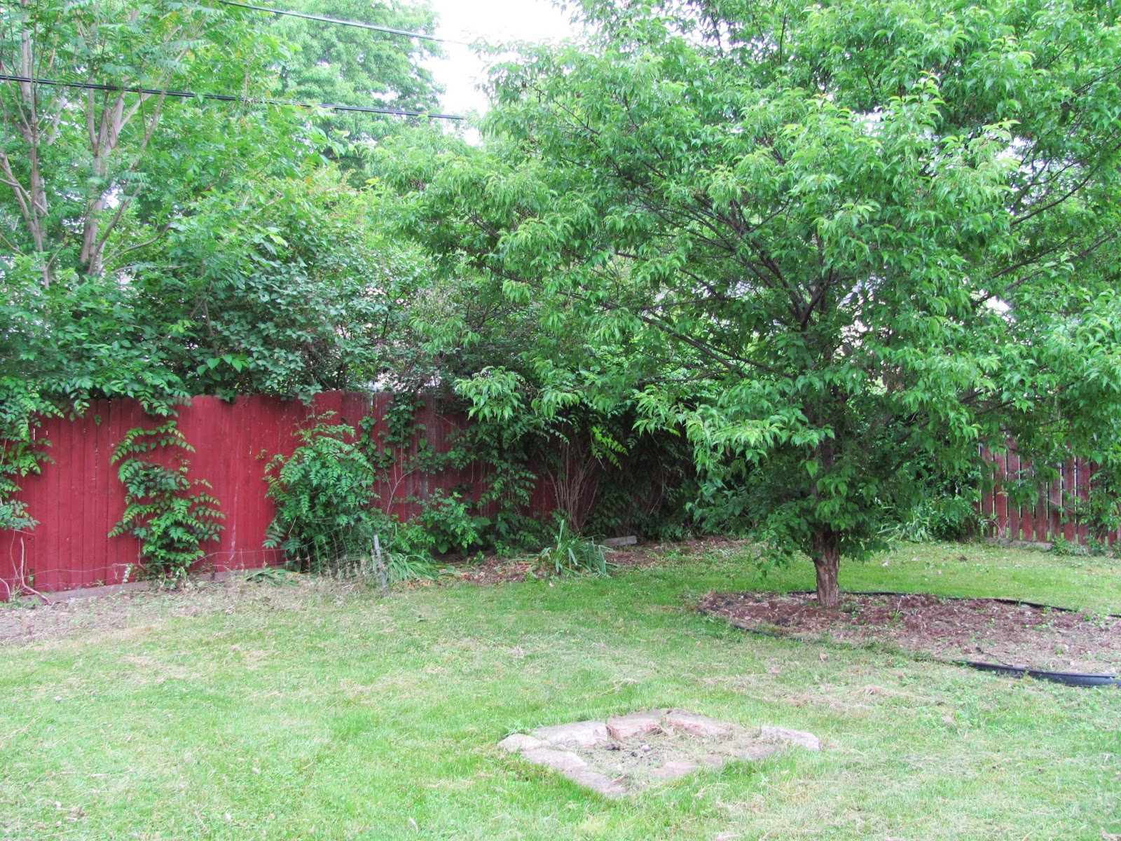 The backyard is seen from the deck.  Old fire pit is seen in lower center