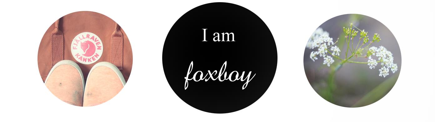 I am foxboy