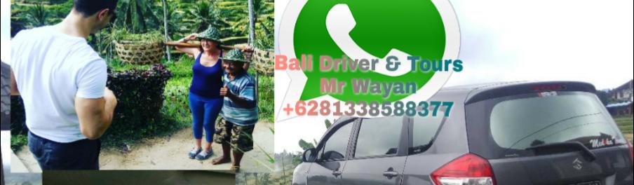 Ubud Transport & Tour driver