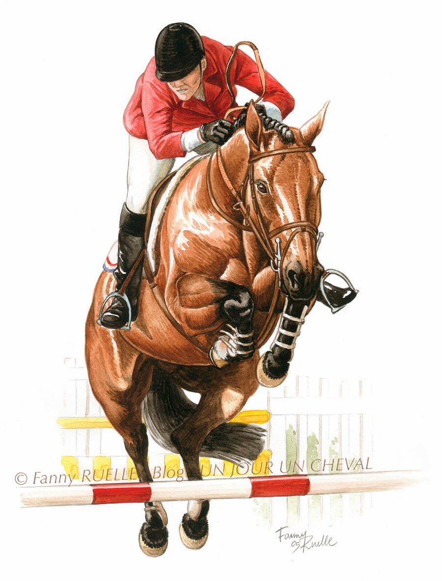 Un jour un cheval cavalier de saut d 39 obstacle l 39 aquarelle - Frison saut d obstacle ...