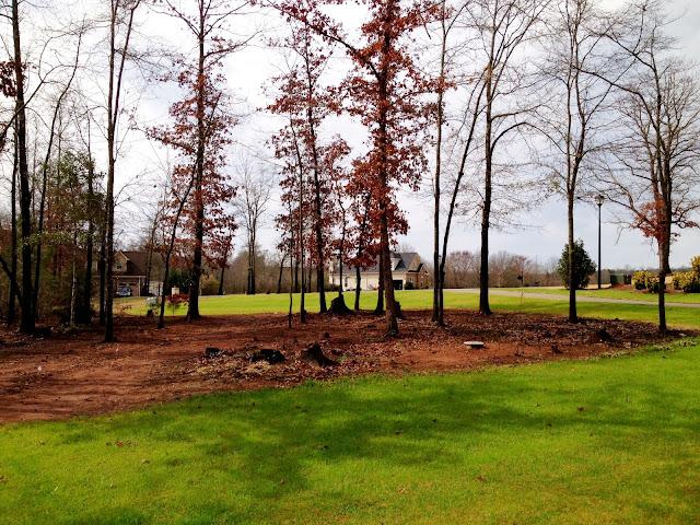 Southern Soul Mates: Spring Landscaping Progress: Part 2