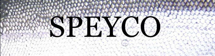 SPEYCO U.S.A.