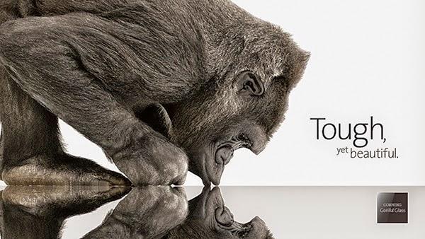 The Apple become, fun facts, Apple, Apple began with a calculator, Steve Wozniak, Steve Jobs, special machine calculator, Hewlett-Packard HP-65,QuickTake 100, camera, Steve Jobs adoptive, Paul Jobs, 4. Apple earns more than $ 5,000 in the second, Gorilla Glass, Ronald Wayne, logo,