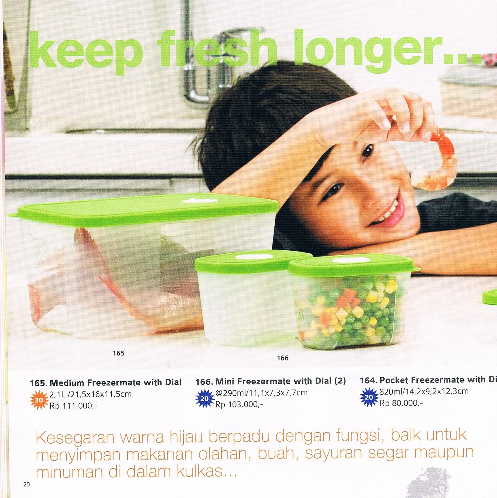 Katalog Reguler Terbaru Tupperware Edisi November 2012 Aliatupperware Pocket Freezermate With Dial