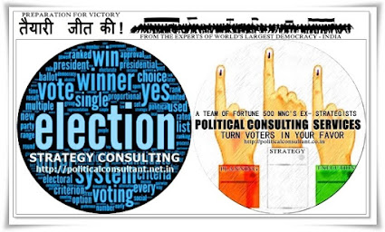 Election Strategy Consultant | Political Campaign Management