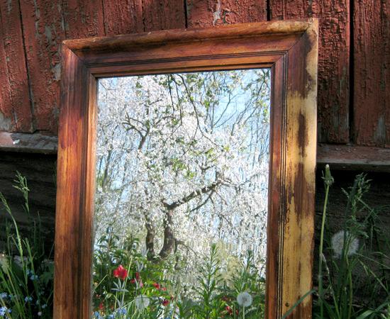 зеркало, фото