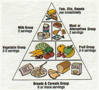 Fast Food Chronic Disease