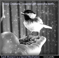 Every Creature, A Sacred gift Upon the Earth