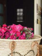 Obľúbené kvety