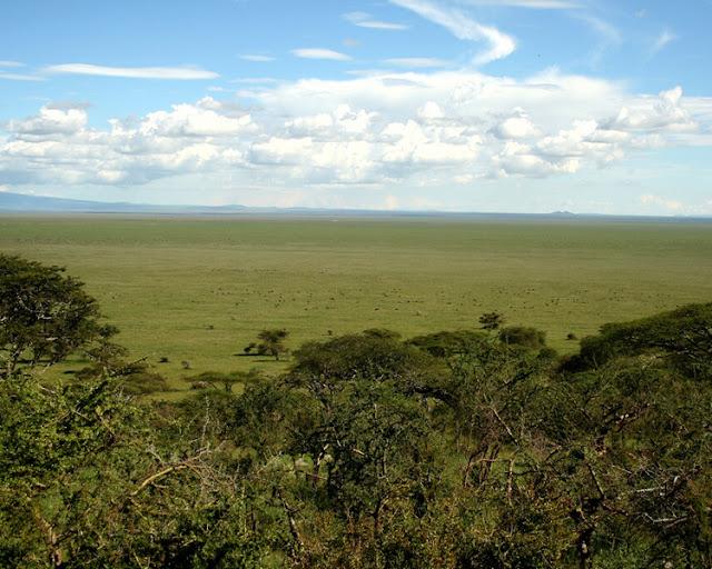 Tanzania - Africa