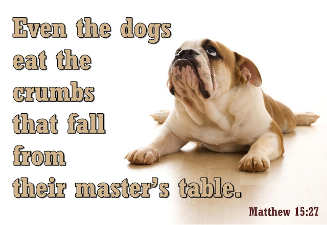 Bible Dogs Eat Crumbs
