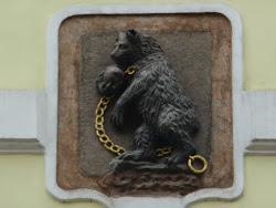 L'ours du jour...