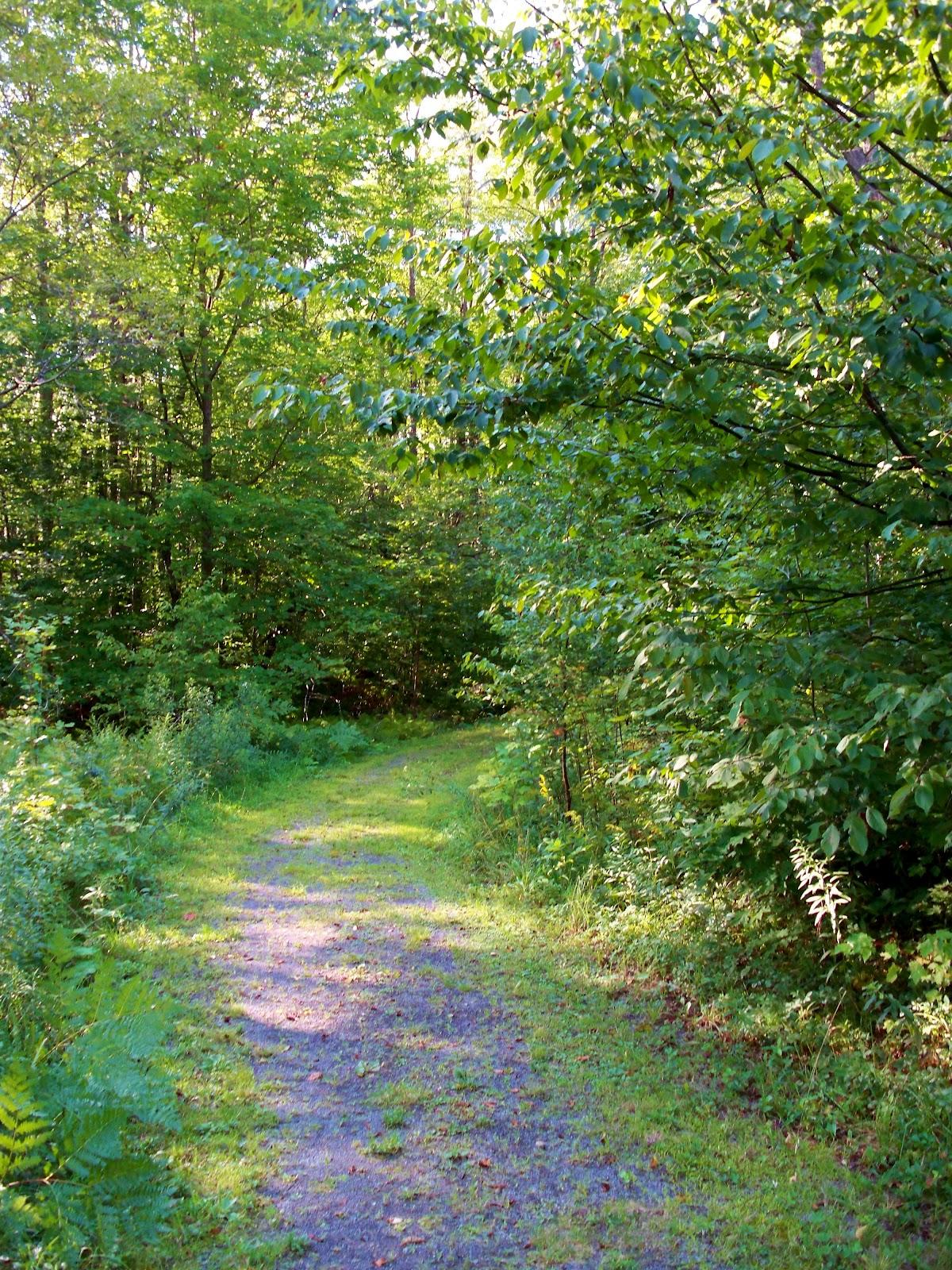 Organic aspirations a tour of timberdoodle for Timberdoodle