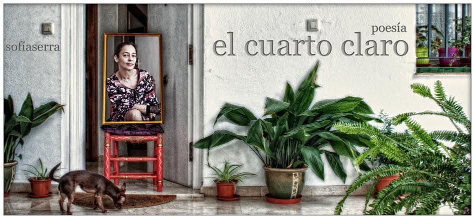 El cuarto claro (Sofía Serra)