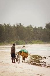 Zanzibar spokojny i nostalgiczny