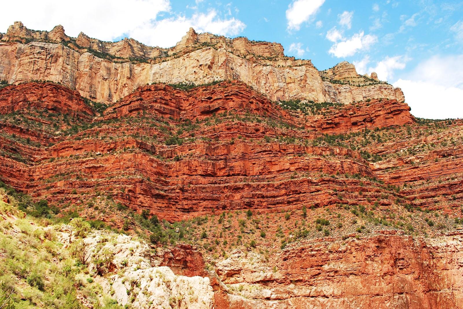Esquel aves el gran ca n del colorado grand canyon for Tierra suelo wallpaper
