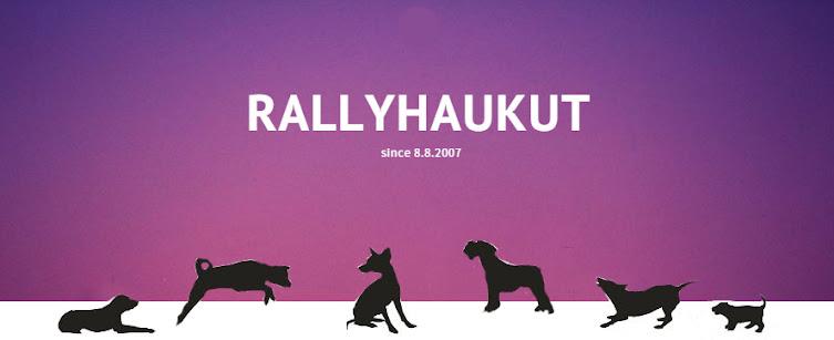 RallyHaukut uutiset
