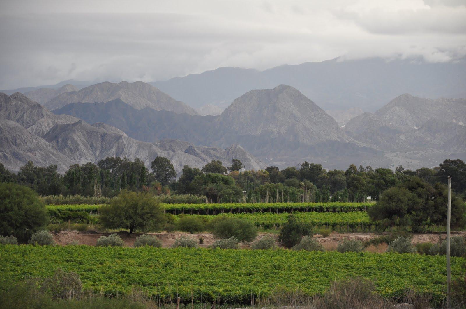Circuito Zonda San Juan : Mis fotos vista del cerro blanco zonda san juan argentina