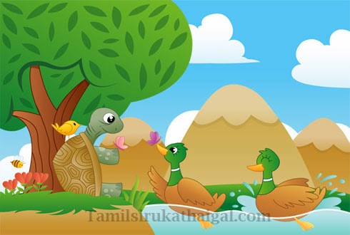 The Tortoise and the Ducks Story 1