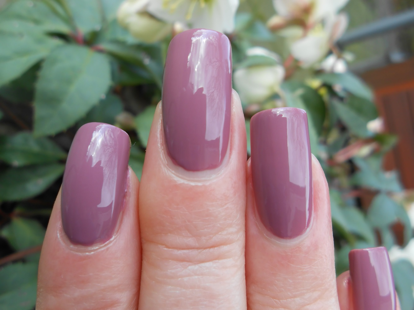 PicturedTinsel: Orly Classic Contours - Orly Blush Collection Spring ...
