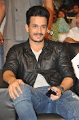 Akhil handsome looking photos gallery-thumbnail-6