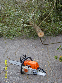 Pihapuiden leikkaukset pihatyöt puutarhatyöt e-mail: talonmiespalvelu@gmail.com