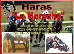 Haras La Morocha