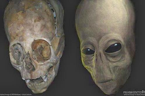http://1.bp.blogspot.com/-NsS_cCuJi5M/Uvq29PXbFtI/AAAAAAAAch4/wE6zymAePI4/s1600/Alien+Elongated+Skull+paracas+inca+peru+Elongated+Skulls+Brien+Foerster+aliens+extraterrestres+2014.jpg